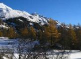 region neige
